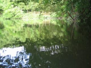 2005-07-02 04.jpg